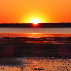 Sun Set Cape Cod Low Tide